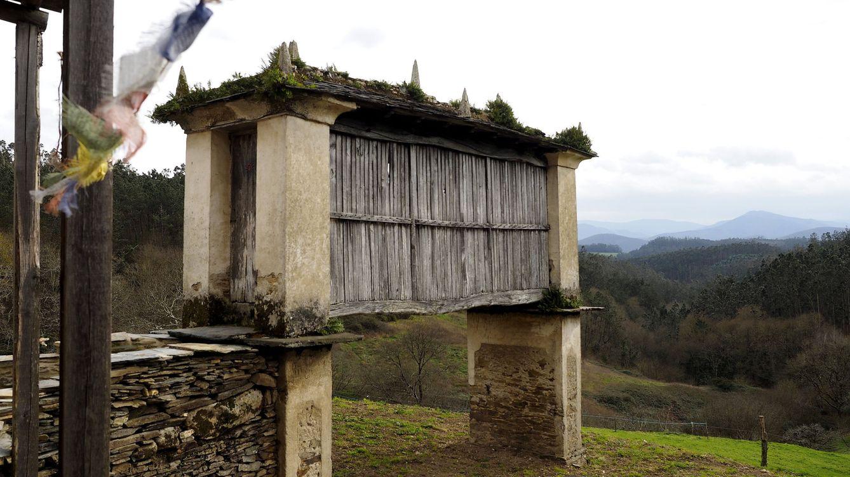 La expropiación de tierras abandonadas en Galicia choca con el Gobierno central