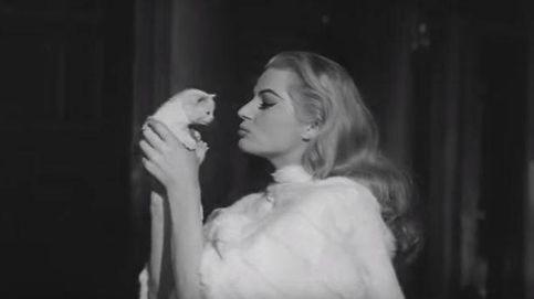 Día Internacional del Gato: los 20 felinos más famosos de la pequeña y gran pantalla