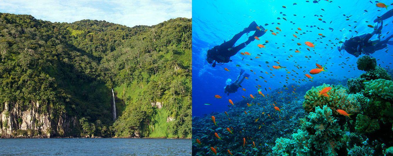Foto: Del Mar Rojo a Roatán: cinco mecas para practicar submarinismo este otoño