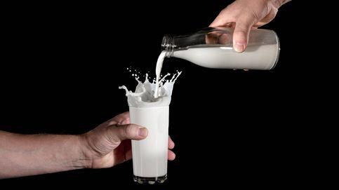 El mejor momento del día para tomar un vaso de leche