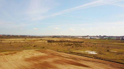 Alcorcón elige al 'cerebro' de Eurovegas II para gestionar la mayor bolsa de suelo