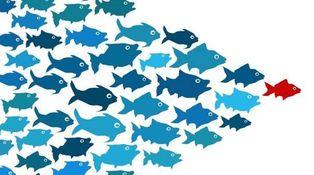 Tres cosas que buscan las empresas en sus directivos (I)