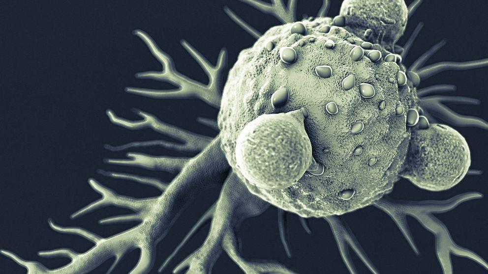Los telómeros, o cómo retrasar y combatir el cáncer y el alzhéimer