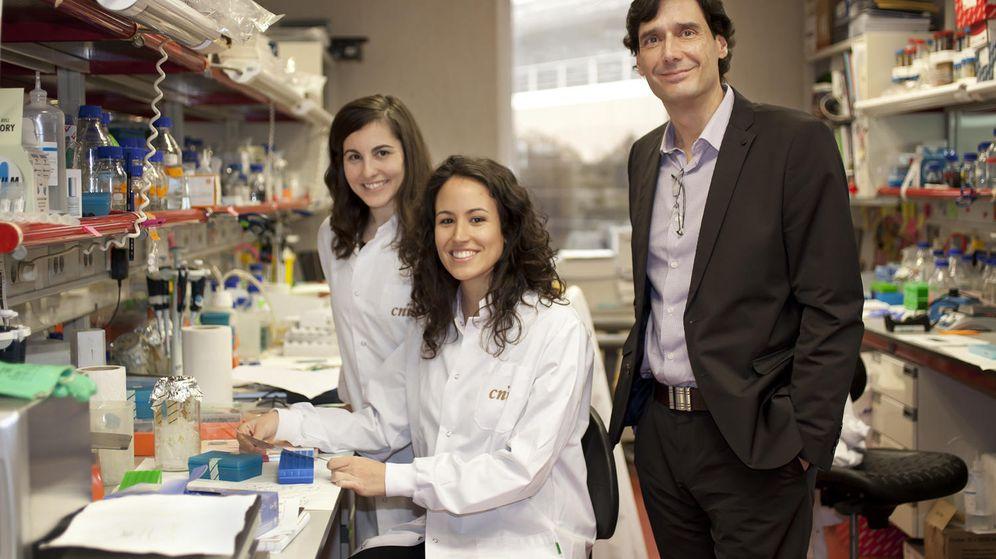 Foto: Los investigadores del Centro Nacional de Investigaciones Oncológicas (CNIO).