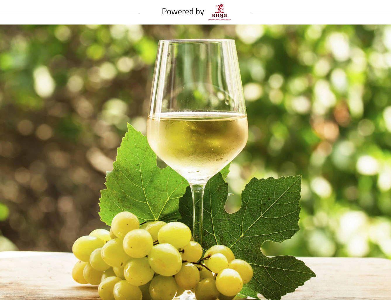 Foto: Interesantes, elegantes y con diversos matices de profundidad, los vinos blancos de Rioja son sinónimo de personalidad