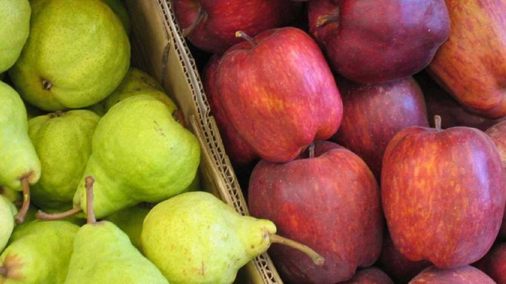 Foto: Peras y manzanas.