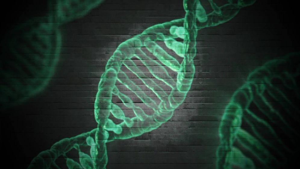Foto: Investigadores internacionales encuentran un gen que protege frente a la muerte celular en pacientes con ELA y AME. (Foto: Unsplash)