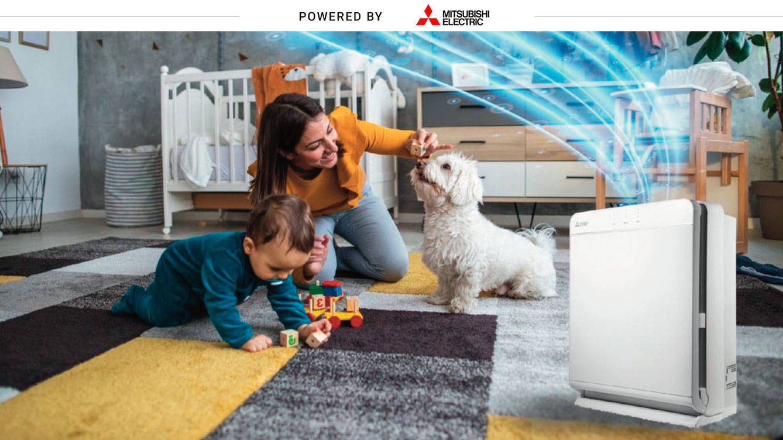 Una semana con un purificador de aire en casa: ¿adiós a la alergia y las bacterias?