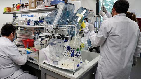Una empresa vasca se posiciona para fabricar en masa la vacuna de Harvard contra el covid