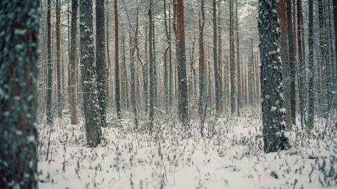 ¿Cuándo empieza el invierno? La nueva estación llegará con menos frío de lo habitual