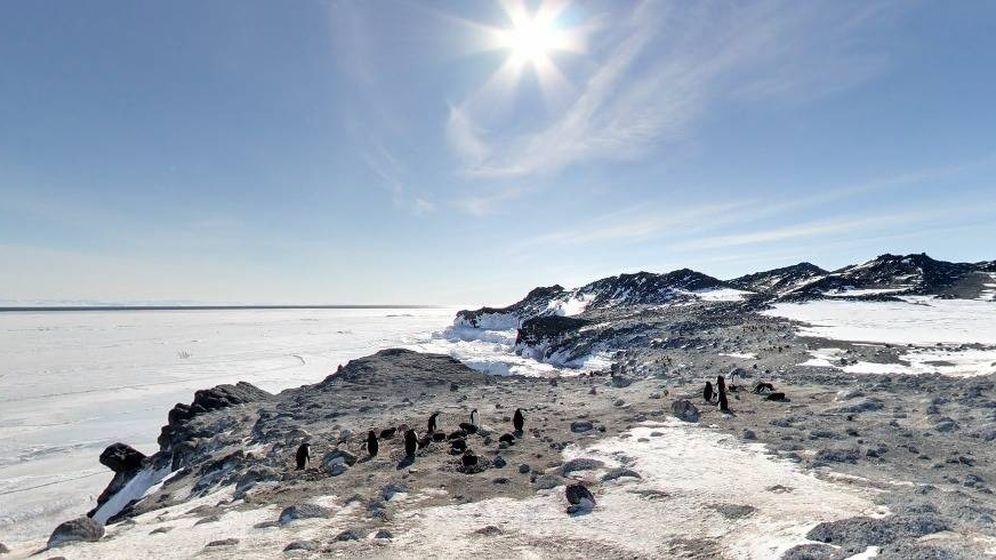 Foto: El Cabo Royds, en la Antártida, es uno de los lugares que se pueden visitar desde casa en Street View.