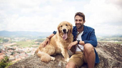 Un perro recorre 100 kilómetros para encontrar a sus dueños