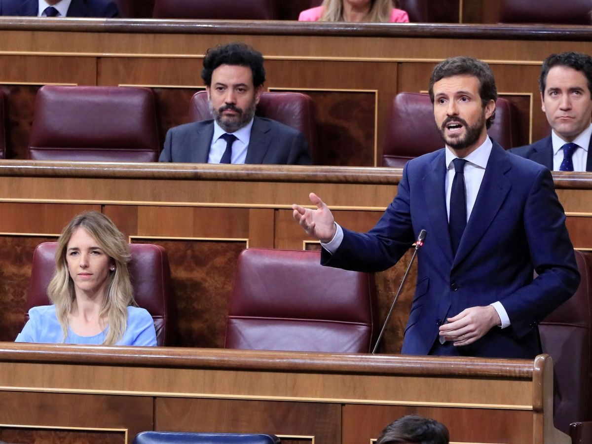 Foto: El líder del PP, Pablo Casado, durante su intervención en la sesión de control al Gobierno. (EFE)
