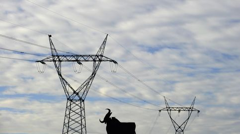 El precio de la luz toca el nivel  que obligó a intervenir al Gobierno hace tres años