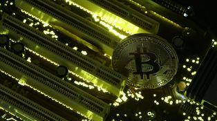 El bitcoin va a desplomarse un 50%