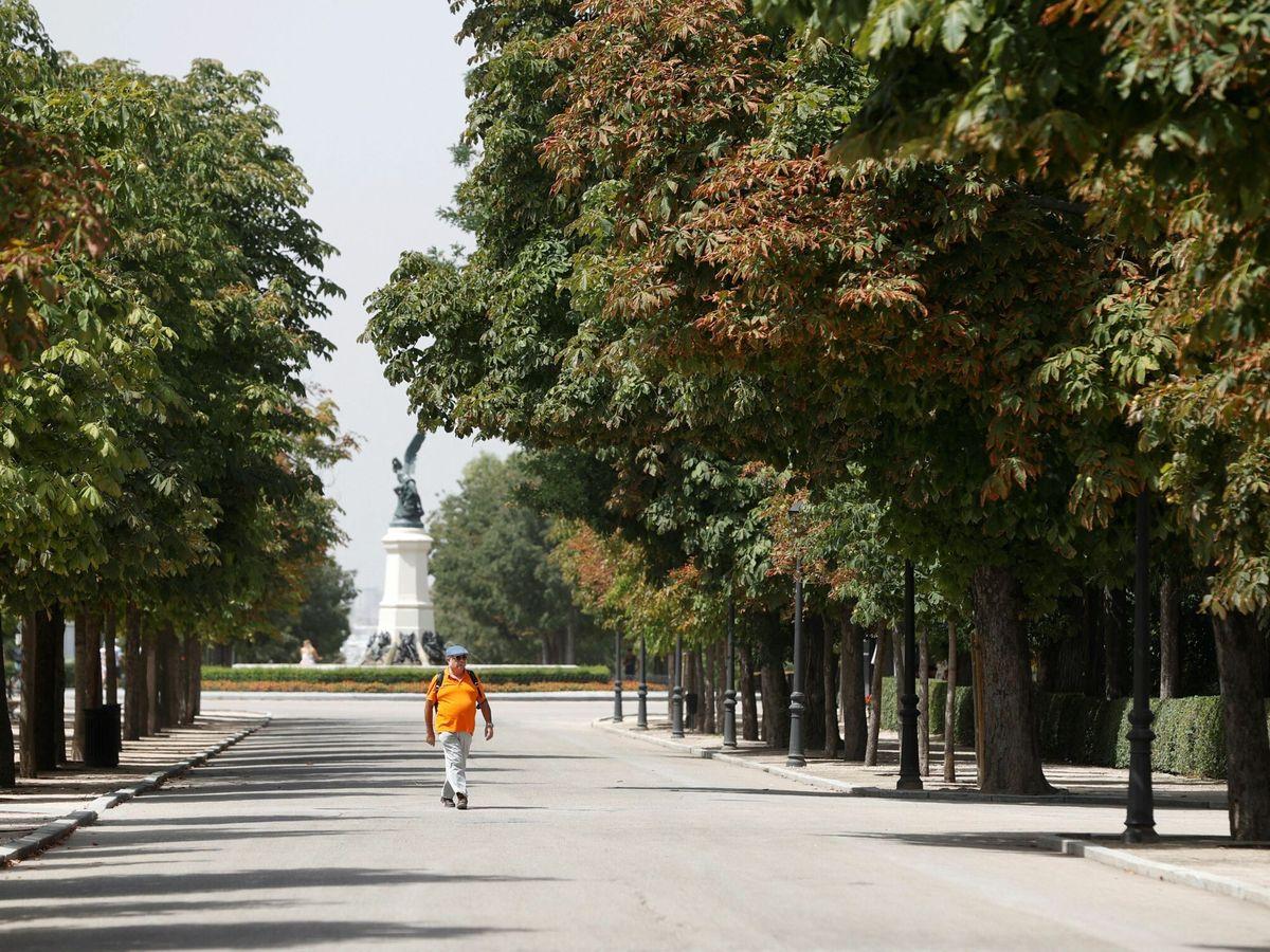 Foto: Parque del Retiro, en Madrid. (EFE)