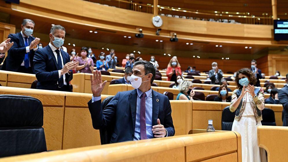 Foto: El presidente del Gobierno, Pedro Sánchez, aplaudido por la bancada socialista en el Senado. (EFE)