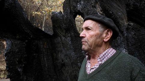 Afectados por los incendios de Galicia