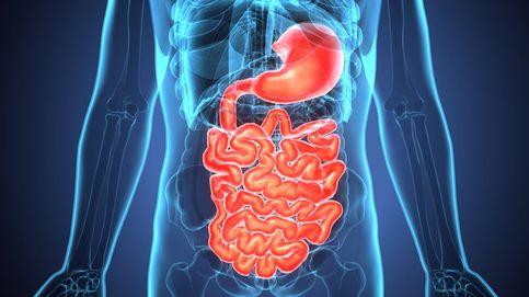Cómo adelgazar sin hacer dieta mejorando tu sistema digestivo