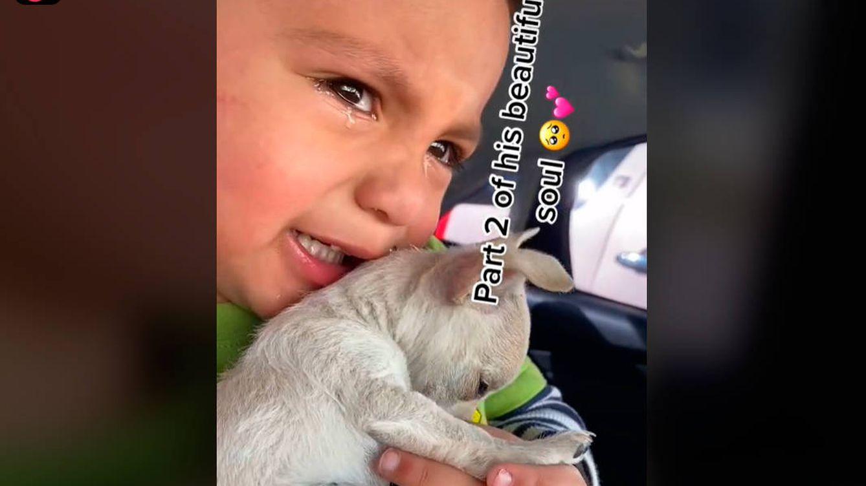 Un niño no puede reprimir las lágrimas al ver cómo vacunan a su mascota y se vuelve viral