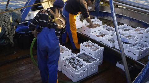 El gran apoyo al sector pesquero español