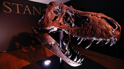 Un esqueleto completo de Tiranosaurio rex, a subasta