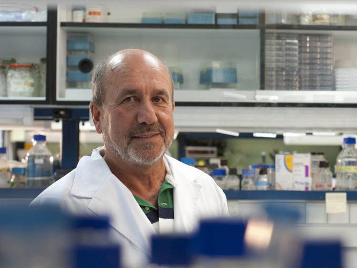 Foto: El investigador Mariano Esteban. (Xiomara Cantera/CSIC Comunicación)