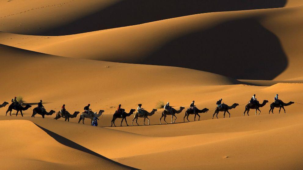 Explora el desierto a lomos de un camello gracias a Google Maps