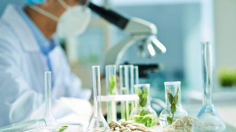 Los test de intolerancias alimentarias: de moda, pero sin validez científica