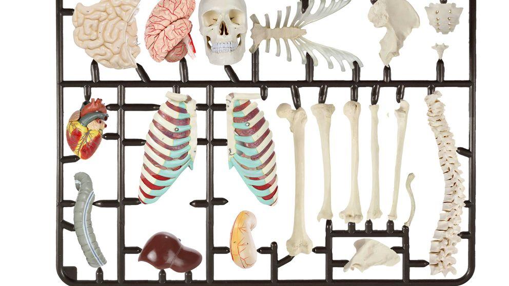 El lado oscuro de la sanidad: conflictos de intereses, 'papers' para vender implantes