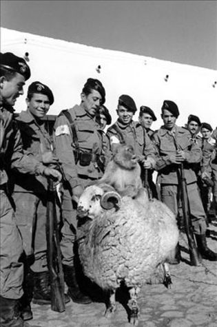 Foto: Sidi Ifni: la Guerra Olvidada de España