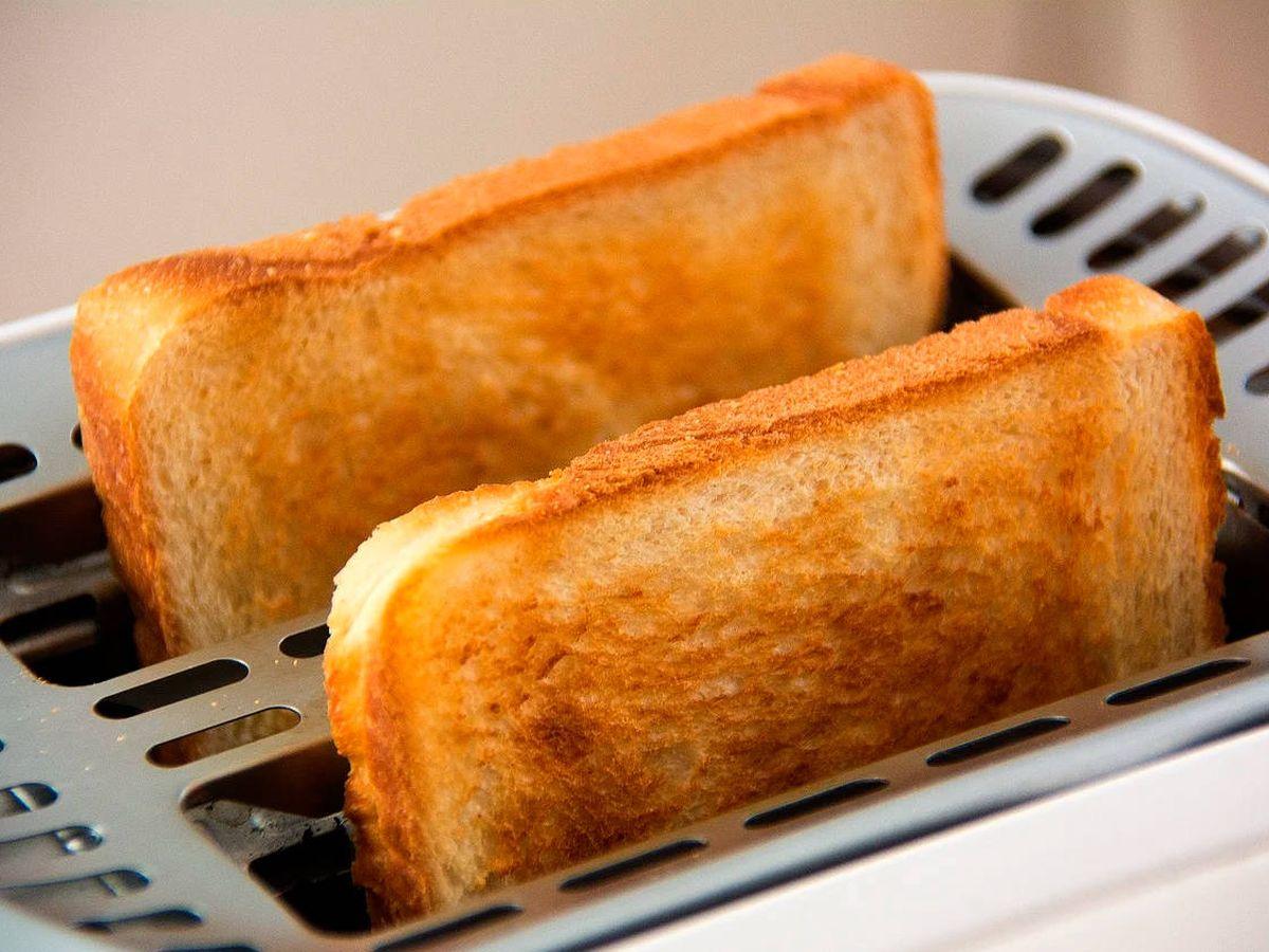 Foto: Las mejores tostadoras del mercado para hacer las recetas más exquisitas (Pixabay)