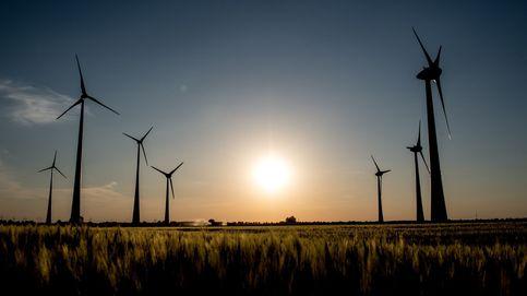 La instalación de energía renovable caerá en 2020 por primera vez en 20 años
