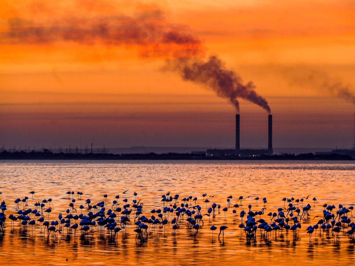 Foto: La dependencia del petróleo es uno de los grandes problemas de Kuwait (EFE EPA/Raed Qutena)