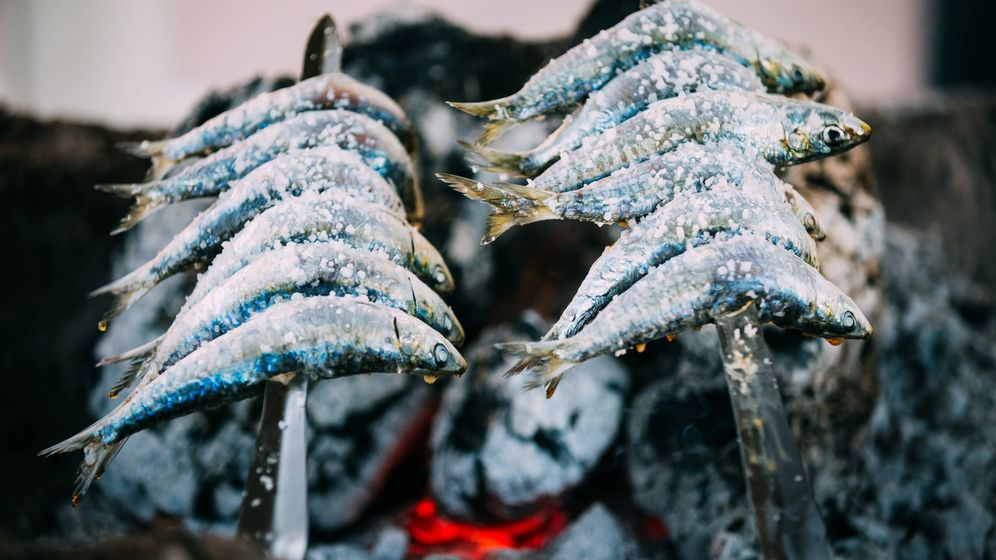 Foto: Espetos de sardinas. (iStock)
