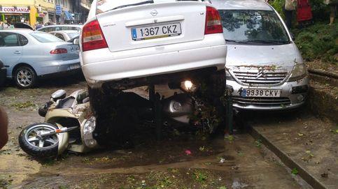 Una tormenta en Zaragoza derriba más de 50 árboles y destroza varios coches