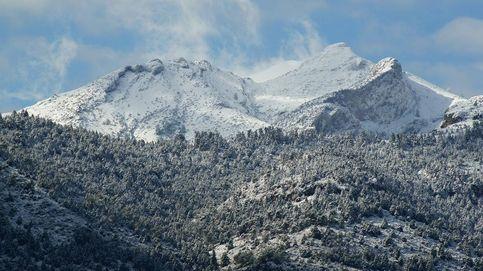 Vídeo   La Sierra de las Nieves, un parque nacional para los abetos del sur