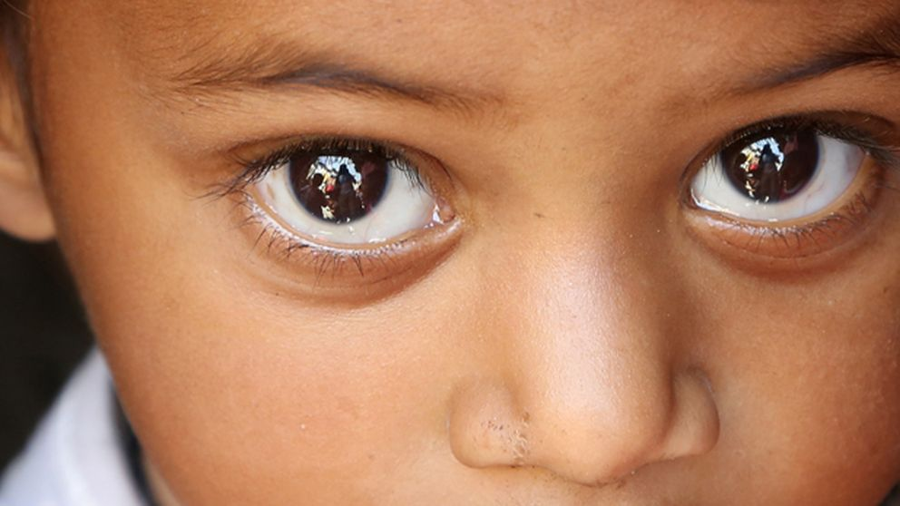 Un sistema para recuperar las imágenes reflejadas en las pupilas de las fotos