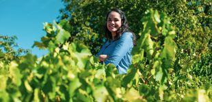 Post de ¿Cuánta agua necesita una vid para producir uvas de forma eficiente?