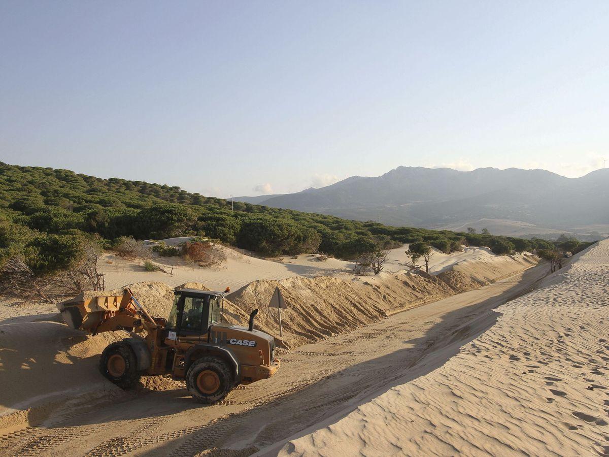 Foto: Una excavadora retira arena de la duna de Valdevaqueros. (EFE)