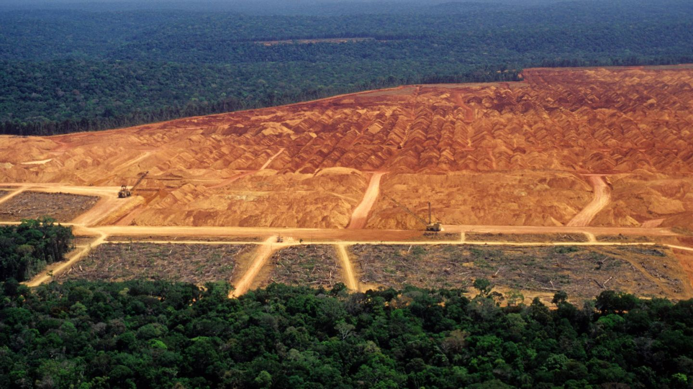 Deforestación en el Amazonas. (Reuters)
