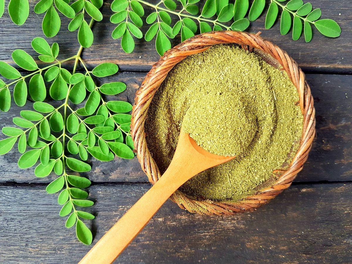 Foto: Las hojas de moringa se secan y se hacen polvo. (iStock)