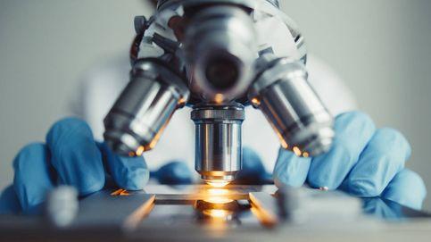 Científicos en busca de popularidad: la verdad detrás de los estudios sesgados