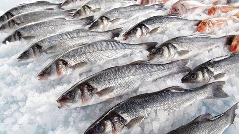 ¿Comes mucho pescado? Ten cuidado: así puede afectar a tu salud