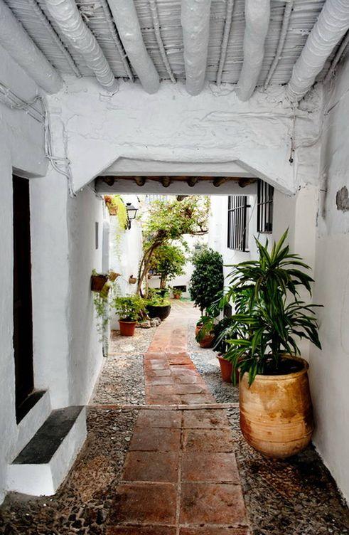 Foto: Calles estrellas y empinadas, pasadizos, mucha flor y planta, todo blanco (Turismo de Frigiliana)