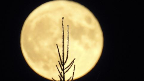 Un descubrimiento revela que la luna se está oxidando, sin agua líquida ni oxígeno