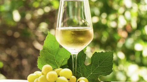 Nuevos vinos blancos de Rioja: la revolución enológica del siglo XXI