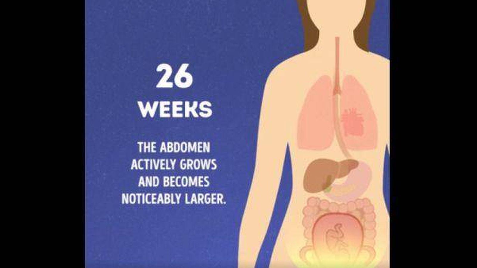Vídeo: Así cambia el cuerpo de una embarazada