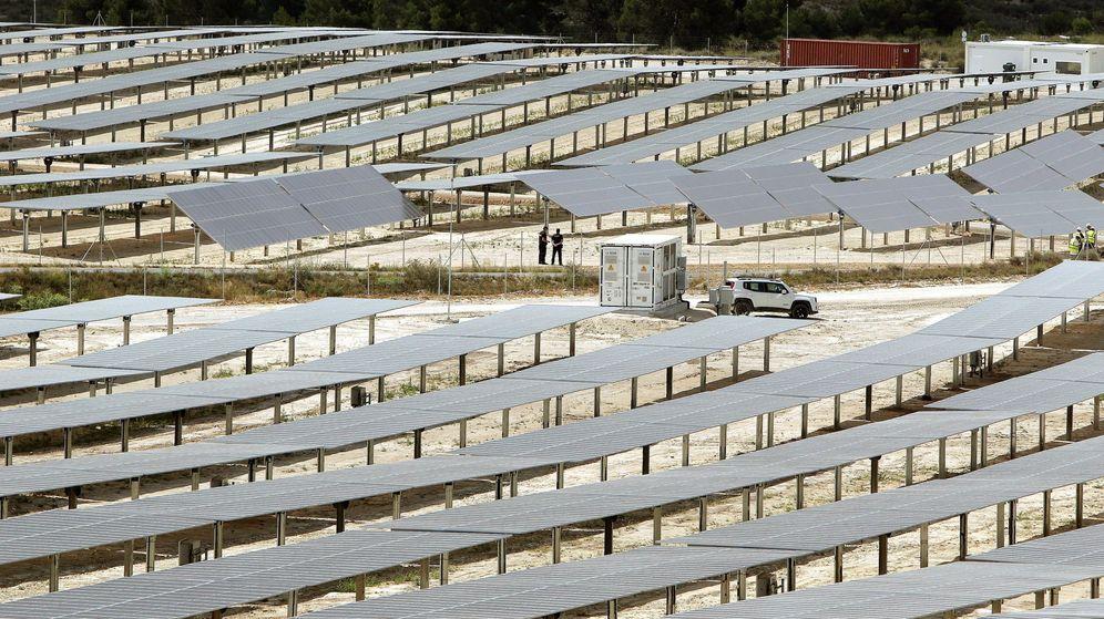 Foto: Planta fotovoltaica en Alicante. (EFE)