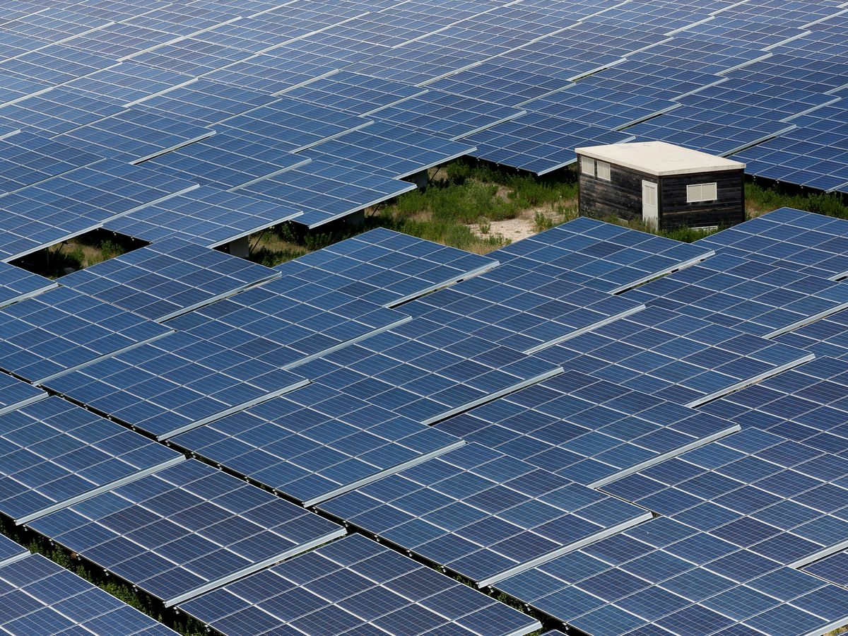 Foto: Imagen de archivo de un parque solar. (Reuters)